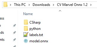 custom vision marvel onnx 1.2 exported files