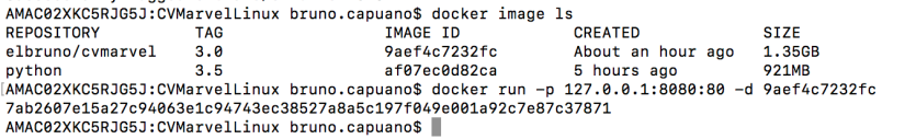 03 docker list images and run image
