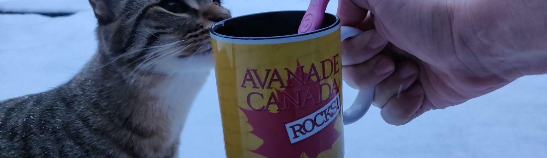 Avanade Canada mug on snow with goku