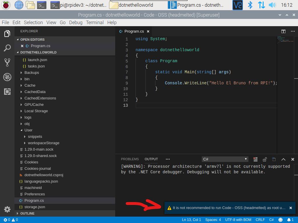 raspberry pi 4 visual studio code run as root warning